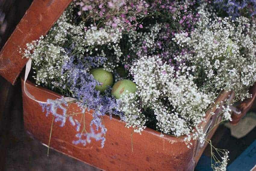plantas bodas
