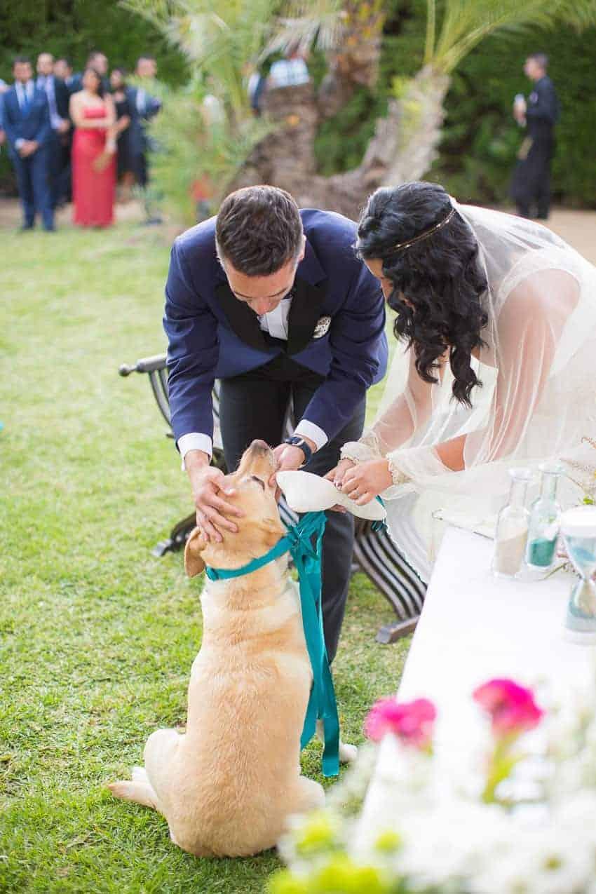 novios y perro boda